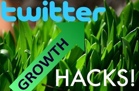 10 Advanced Twitter Growth Hacks to Increase Your Follower Numbers | Social Media Marketing | Scoop.it