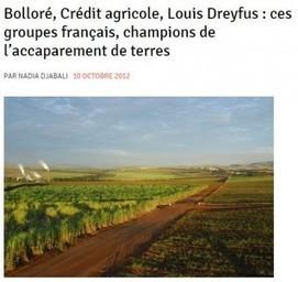FRANCE: Bolloré perd son procès contre Bastamag - Accaparement des terres | Governance, Business ethics and Sustainability | Scoop.it