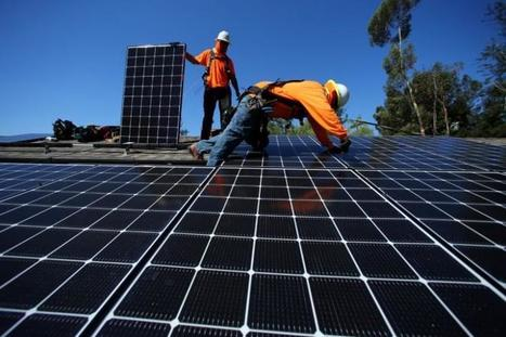 Global green energy growth seen weathering Trump storm, for now | Climate change | Scoop.it