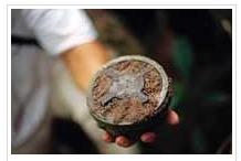 Landmines | Cambodia Study Program, June-July 2013 | Scoop.it