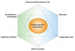 Acceptance and Commitment Therapy Hengelo | welbeing, happiness, art of living, strenghts | Scoop.it