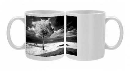 Photo Mug of Infra red image of a tree against dark evening sky, near Pienza, Tuscany, from Robert Harding | hotsales | Scoop.it