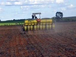 Chuvas em Lucas do Rio Verde fazem produtores retomarem plantio de soja | Lucas do Rio Verde | Scoop.it