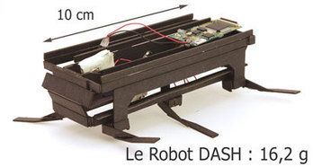 Dash : le robot indestructible est disponible pour tous | Electronique et Robotique | Scoop.it