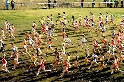 Psicología: La actividad física mejora la salud cerebral | - Atletas | Educación Física-Prof. Facundo | Scoop.it
