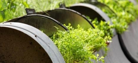 France : où sont les jardins partagés et connectés de 2016 | Communiqu'Ethique sur les initiatives locales pour changer (un peu) le monde | Scoop.it