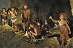 Neanderthal lineages excavated from modern human genomes | Aux origines | Scoop.it