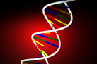 6 Ways Gene Patent Case Could Impact Biotechnology | Breast Cancer Advocacy | Scoop.it