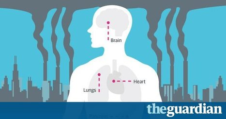 How air pollution affects your health - infographic | Open Data, Datajournalisme et Dataviz | Scoop.it