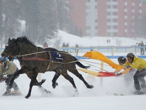 Dal chill out riding allo skijoring, i nuovi trend delle vacanze neve | GH WebNews | Scoop.it