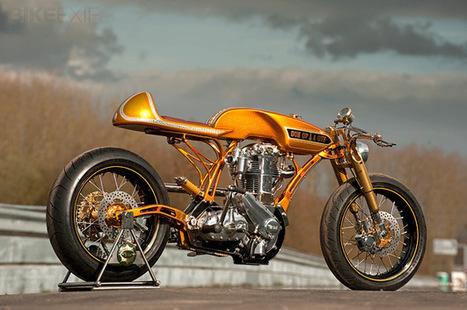 Son Of A Gun BSA | Bike EXIF | custom cafe racer | Scoop.it