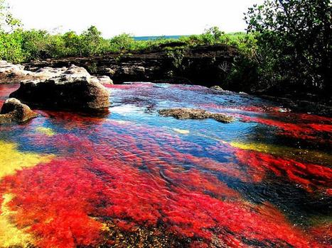 El río de los cinco colores, una de las maravillas naturales mas hermosas del mundo | Agua | Scoop.it