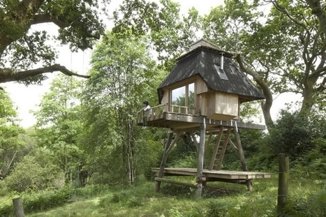 Hut on Stilts : une Tiny House montée sur pilotis | Efficycle | Scoop.it