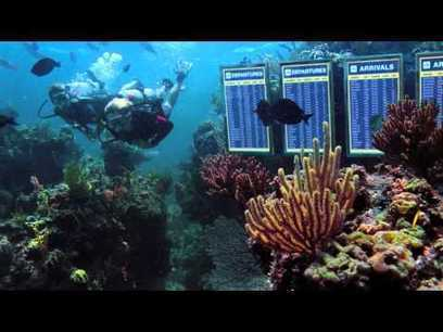 American Airlines promotes SCUBA diving in a new ad | SCUBA Marketing | Scoop.it