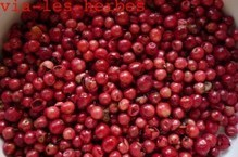 Le poivre renforce l'action des anti-inflammatoires   Epices, aromates, poivre et vanille   Scoop.it