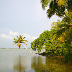 kerala | travel destinations | Scoop.it