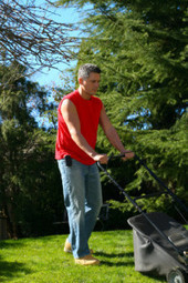 We provide lawn care service to ease you - Lawn Monster of Minneapolis MN | Lawn Monster of Minneapolis | Scoop.it