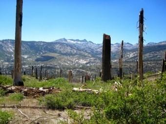Thru-Hiking the JMT: Devil's Postpile to Deer Creek | Hiking | Scoop.it