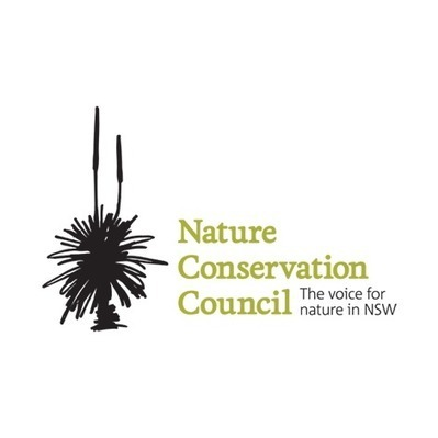 Conservation groups withdraw from Baird Government's  flawed consultation on forestry operations   Australian Forests   Scoop.it