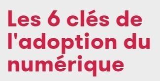 NetPublic » Les 6 clés de l'adoption du numérique par les PME : Outil méthodologique en ligne | Communication 2.0 (référencement, web rédaction, logiciels libres, web marketing, web stratégie, réseaux, animations de communautés ...) | Scoop.it