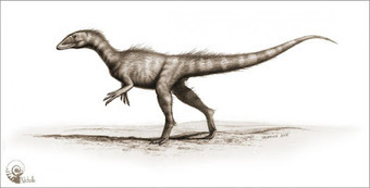 The Archaeology News Network: 200 million-year-old Jurassic dinosaur uncovered in Wales | Histoire et Archéologie | Scoop.it