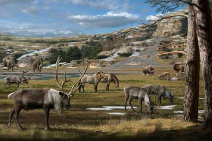 A 'smoking gun' on the Ice Age megafauna extinctions | Sustain Our Earth | Scoop.it