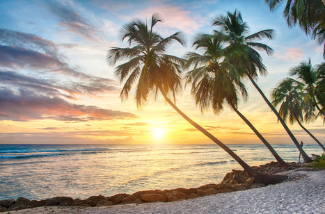 Overstock Invests $4 Million in Barbados Bitcoin Startup - CoinDesk | US Civil History | Scoop.it