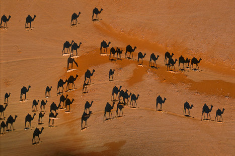 Floating in the Desert Air   Digital-News on Scoop.it today   Scoop.it