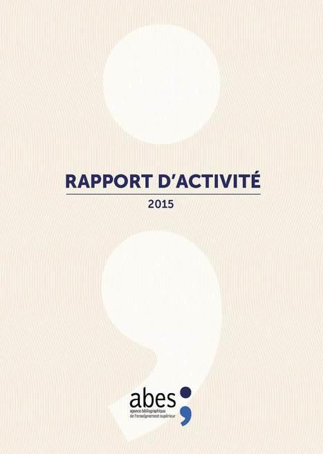 Le Rapport d'Activité 2015 de l'Abes est en ligne   Classeur virtuel   Scoop.it