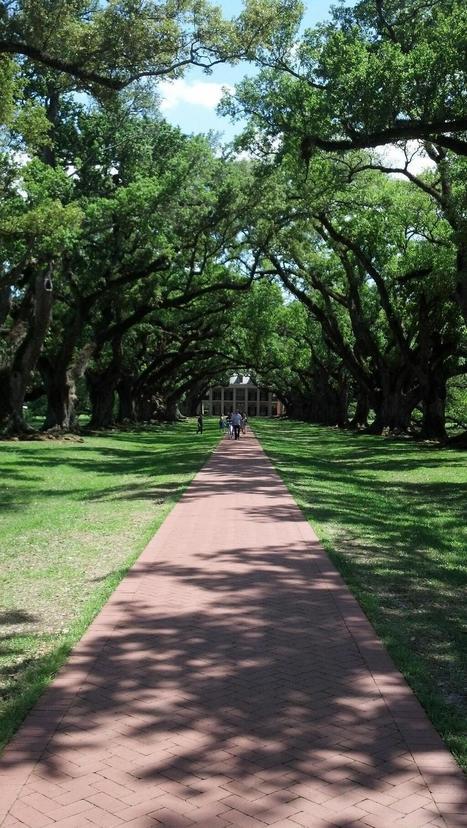 Twitter / Ryan_Henke: Oak alley plantation ... | Oak Alley Plantation: Things to see! | Scoop.it