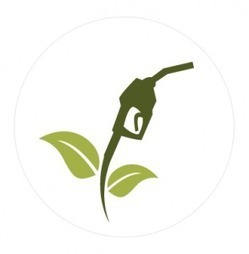 Is the time ripe for Biodiesel? | Ecoideaz.com | Scoop.it