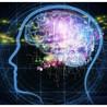 Devotional Emotional Spiritual Consciousness Intelligence