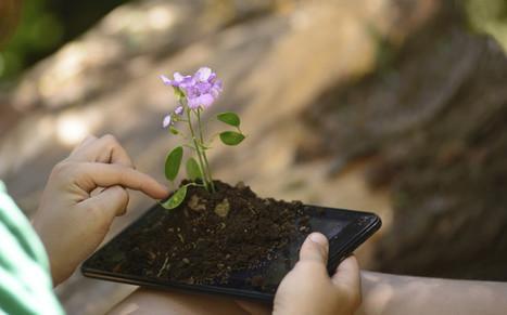 Pollution numérique : l'impact sur l'environnement n'est pas virtuel | Toxique, soyons vigilant ! | Scoop.it