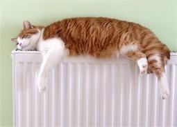 Cómo Ahorrar en Calefacción en Casa | ahorro en calefacción | Scoop.it