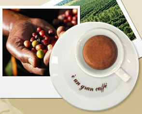 Quarta Caffè - An ecofriendly company we'll be working with... | scatol8® | Scoop.it
