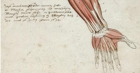 Découverte de manuscrits rares à la BIU Santé de Paris | MuséoPat | Scoop.it
