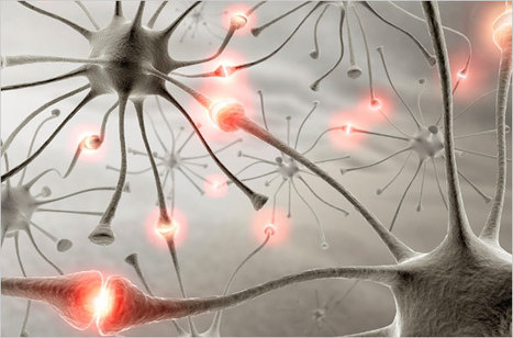 Adult Learning - Neuroscience - How to Train the Aging Brain - NYTimes.com   Teaching and Learning with Teachers   Scoop.it