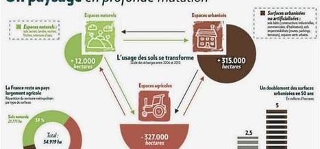 La ville dévore inexorablement les terres agricoles françaises   ECONOMIES LOCALES VIVANTES   Scoop.it