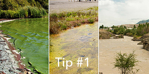 7 Tips to Fight Fouling and Extend Water Quality Sonde Deployments | Tip #1 | Water quality | Scoop.it