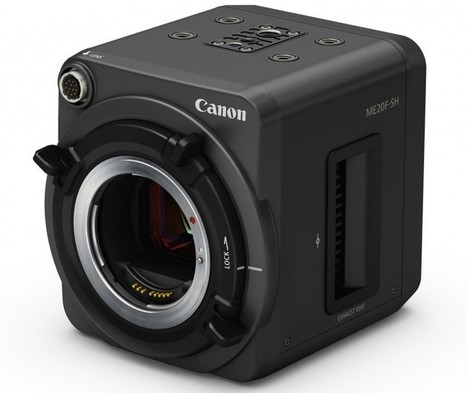 New Canon Full-Frame 35mm Camera Sees in the Dark with 4 Million Max ISO | Human Rights and World Peace | Scoop.it