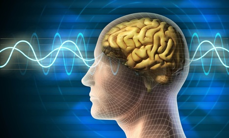 Quantum computers in the brain? | #Technology | Scoop.it