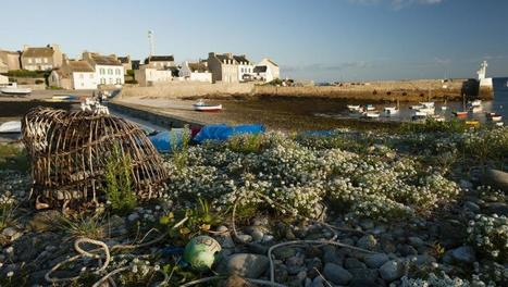 #Molène #podcast @RFI Besoin d'îles #Finistère #Bretagnes #îles du #Ponant | LA #BRETAGNE, ELLE VOUS CHARME - @Socialfave @TheMisterFavor @Socialfave_DEV @Socialfave_EUR @P_TREBAUL @Socialfave_POL @Socialfave_JAP @BRETAGNE_CHARME @Socialfave_IND @Socialfave_ITA @Socialfave_UK @Socialfave_ESP @Socialfave_GER @Socialfave_BRA | Scoop.it
