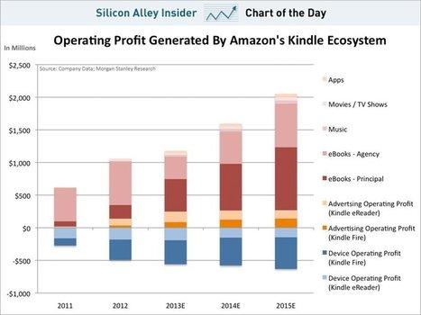 Wirtschaftswoche - Michael Kroker: Kindle-Ökosystem sorgt bereits für ein Drittel des operativen Gewinns von Amazon « Kroker's Look @ IT   Kultur - Zahlen und Statistiken   Scoop.it