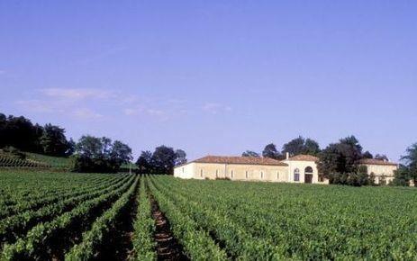 Du rififi dans les vignes de Saint-Emilion   Le vin quotidien   Scoop.it