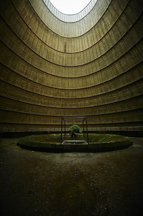 Azuma Makoto: A Suspended Bonsai Inside an Abandoned Power Plant | Art Installations, Sculpture, Contemporary Art | Scoop.it