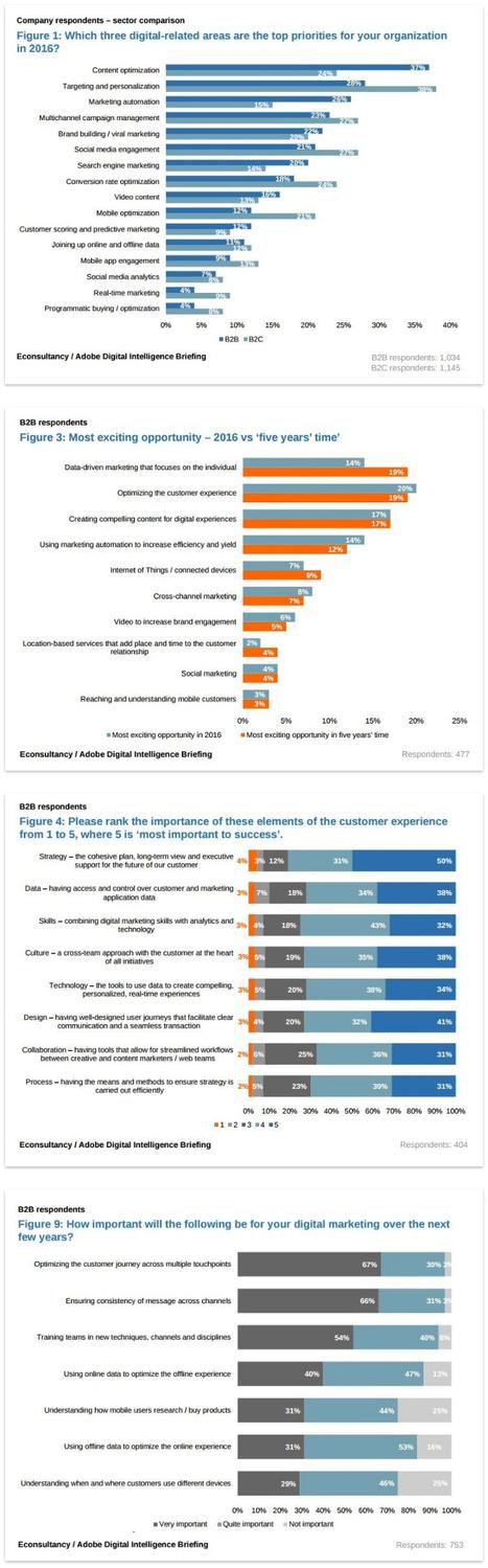 Four Top Digital Priorities for B2B Marketers: Report - E-Consultancy | B2B News | Scoop.it