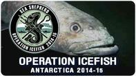 Sea Shepherd Global - Attempted Suicide On Board Poaching Vessel Thunder As Nigeria Strips Registry | Oceans and Wildlife | Scoop.it