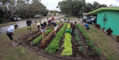 These Lawns Are Being Transformed Into Edible Farms | Un potager dans la ville | Scoop.it