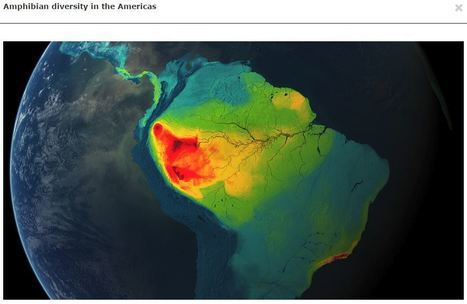 TECH: Mapping the World's Biodiversity | Rainforest CLASSROOM: Inspiration, Resources,and More | Scoop.it
