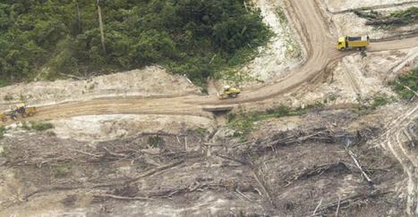 LAS PRUEBAS DE LA AMAZONÍA ARRASADA Y LA NUEVA MANIOBRA DEL GRUPO MELKA | Convoca | La actualidad peruana vista desde el extranjero | Scoop.it